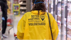A far la spesa ci andiamo noi: Parma WelFARE (foto di Francesca Bocchia)