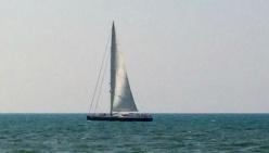 """Trivelle in adriatico, la voce ai """"Verdi"""""""