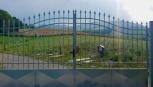 Un amico nel cuore, il cimitero per gli animali a Mattaleto di Langhirano