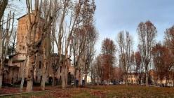 San Secondo P.se. Hanno preso l'avvio le operazioni di potatura degli alberi in piazza Mazzini