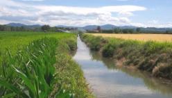 """Sostenibilità ambientale e alimentare:""""Acqua da Mangiare"""" prosegue all'ITAS Raineri-Marcora"""