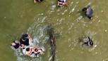 Selfie estremo: bagnanti si fotografano con gli squali.