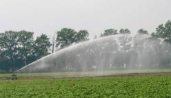 Agricoltura, Alleanza Cooperative ER chiede chiarezza su cumulabilità contributi e credito d'imposta