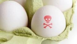 Uova contaminate, la nota ufficiale del Gruppo Amadori