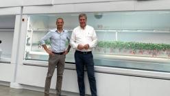 The future is red. &ever e Modula alla conquista dell'Asia con coltivazioni 100% automatiche di fragole.