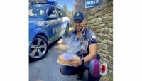 La Polizia Stradale lo scorta per un trapianto urgente.  Ringrazia i poliziotti con un dolce.